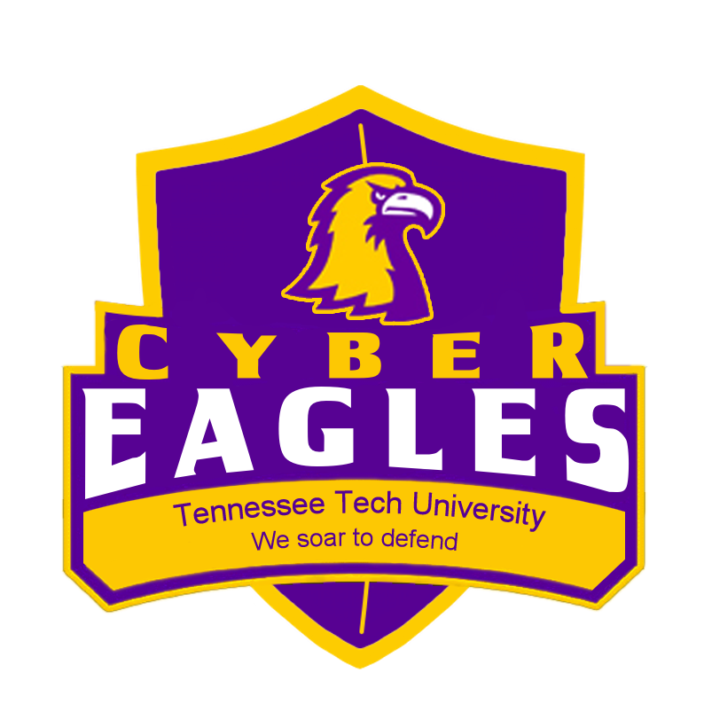 Cyber Eagles